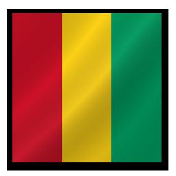 Guinea-Flag-256